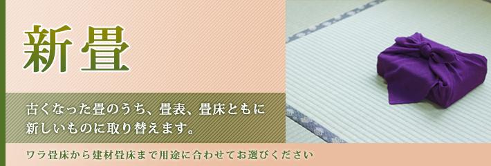 mitaka_shin